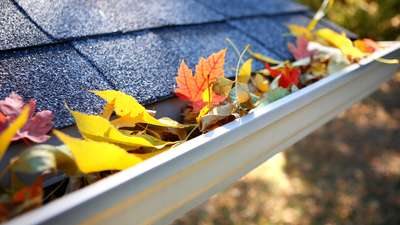 Seamless Gutters: Where Style Meets Function